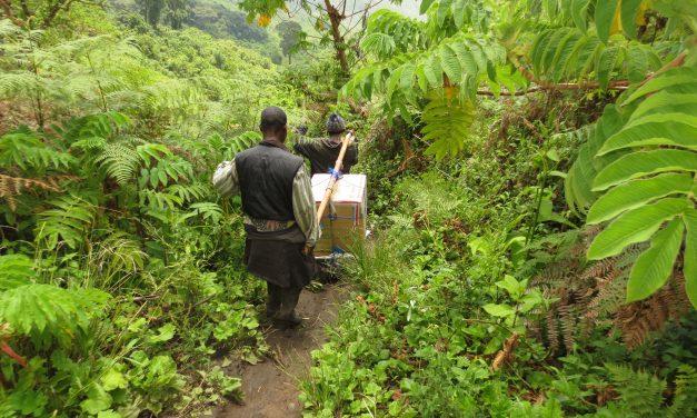 Vieraskynä: Humanitaarinen apu – kuinka se toimii