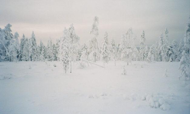 Onko Suomesta feministisen arktisen ulkopolitiikan jäänsärkijäksi?